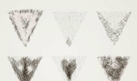 Hình ảnh tỉa lông vùng kín đẹp ở nữ giới