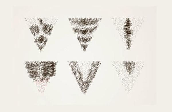 Tác dụng của lông mu