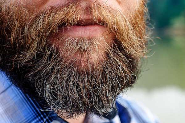 nhổ râu, nhổ râu có tác hại gì, có nên nhổ râu, có nên nhổ râu không, tác hại của nhổ râu, nhổ râu có ảnh hưởng gì không, nhổ râu có bị sao không, tác hại của việc nhổ râu mép, nhổ râu có tác hại gì không, nho rau nhieu co anh huong gi khong, nhổ râu có hại không, tác hại của việc nhổ râu, nhổ râu có tốt không, nhổ râu có sao không, có nên nhổ râu cằm, nhổ râu có ảnh hưởng đến sức khỏe không, Nhổ râu cằm có hại không, nhổ râu cằm có hại phải không, có nên nhổ râu ở cằm không, nhổ râu cằm có ảnh hưởng không, nhổ râu cằm có hệ lụy gì không, nhổ râu cằm có gây hại sức khỏe không, nhổ râu cằm, nhổ râu ở cằm