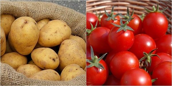 cách trị thâm nách bằng khoai tây, cách chữa thâm nách bằng khoai tây, cách trị thâm nách với khoai tây, trị thâm nách bằng khoai tây, trị thâm nách với khoai tây